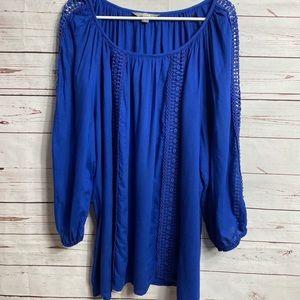 Valerie Stevens blue embroidered blouse